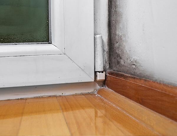 condensacion-img-home