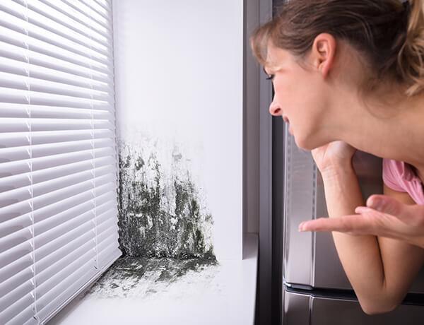 Condensación-hogar